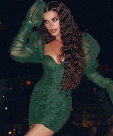 Green Ruched Sheer Sleeve Mini Dress